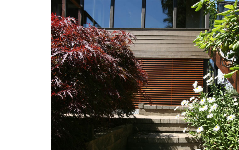 contemporary renovation, cedar trellis
